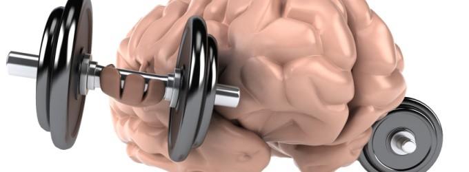 cerebro-fuerte