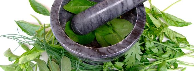 remedios-herbarios