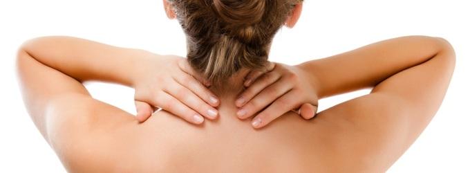 Los departamentos básicos de los músculos pectorales