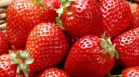 ¿Pueden los diabéticos comer fresas?