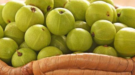 ¿Pueden las grosellas controlar la diabetes?