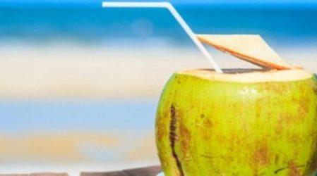 10 motivos para beber más agua de coco