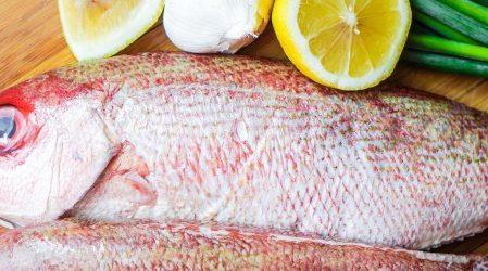 La ingesta de pescados ayuda a mejorar la diabetes